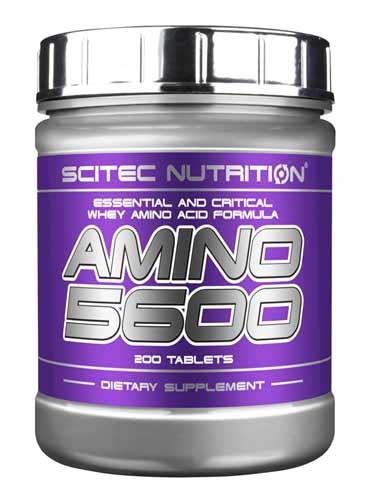Amino 5600 Scitec